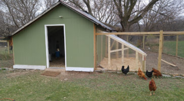 http://purelife.green/wp-content/uploads/2020/02/chickencoop-364x200.jpg