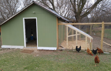 Chicken Coop Sun Room